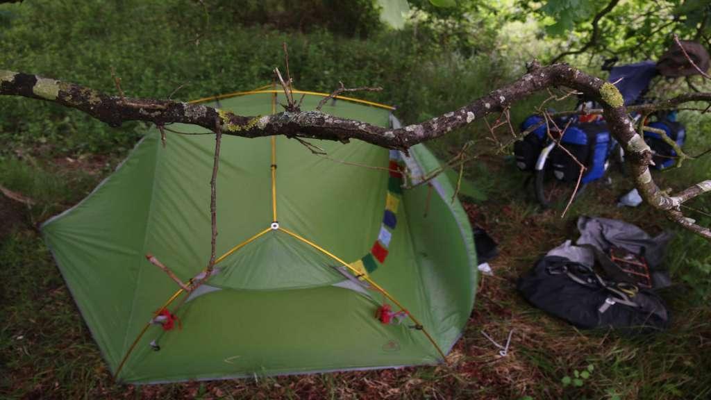 tent-tree
