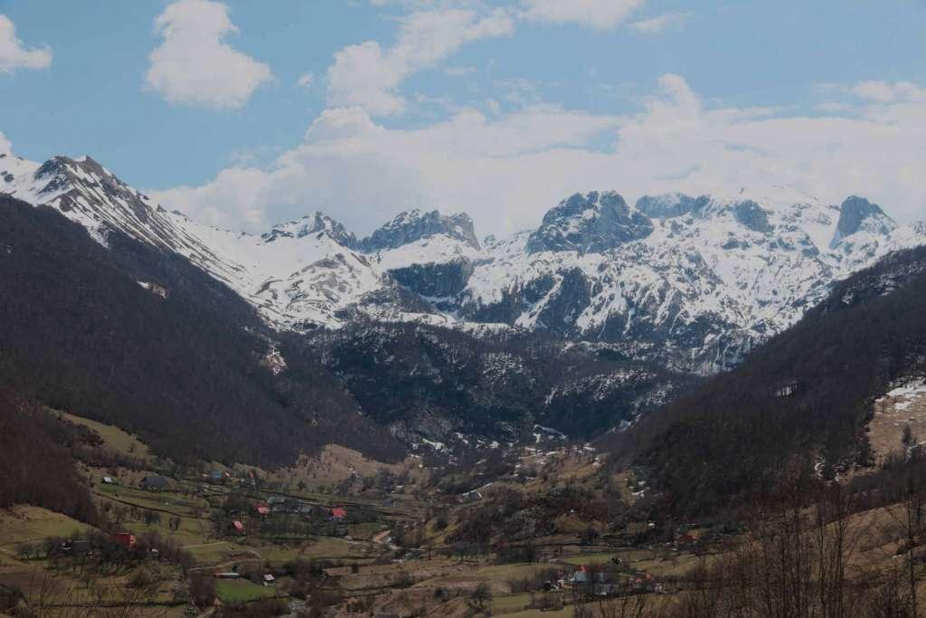 Albania montanga
