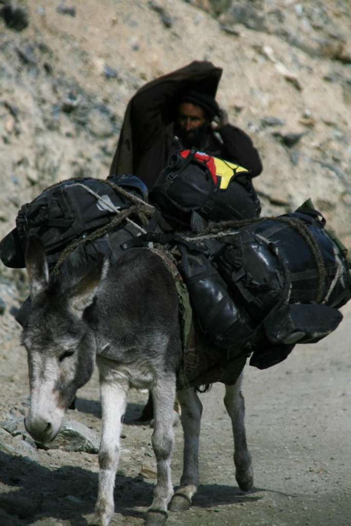 Alforjas para burros inteligentes