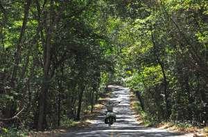 Pedaleando en un bosque tupido de Costa Rica