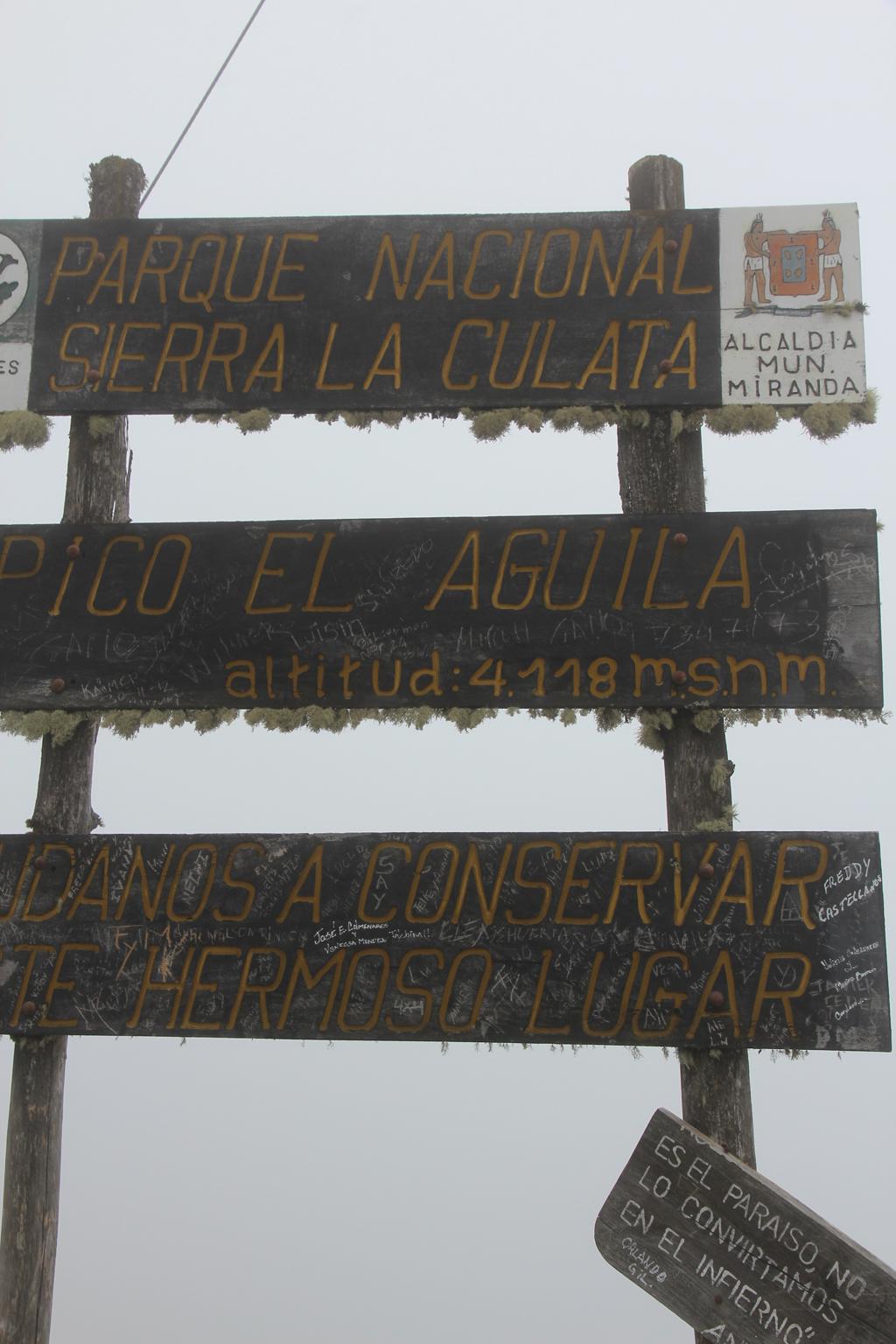 PicoAguila